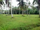 12 Perches Land for Sale in Horana