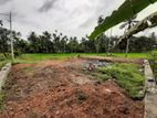 9P Paddy Field Facing Bare Land For Sale in Rukmalgama