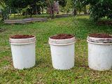 Organic Dried Mixed Fertilizer 20 Litres (කාබනික පොහොර) Pohora