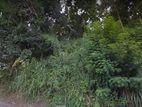 104 P Land Sale Kudugala - Wattegama Road (snpll)