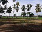 Lands For Sale In Debarawewa