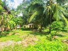 30 P Commer/reside Land Thalawathugoda