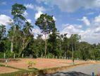 Land in Panadura