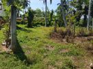 13.5 P Land For Sale In Panadura Nalluruwa