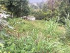 Valuable Land for Sale - Bandarawela
