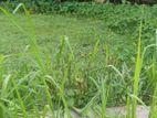 Land for Sale in Galigamuwa