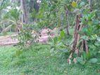 Lands for sale Ranjanagama