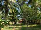 Residential Land for Sale in Hikkaduwa (C7-0953)