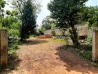 18.38 P Bare Land for Sale in Pita Kotte