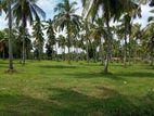 Land for Sale in Bingiriya