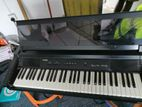 Casio Electric piano Potable