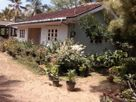 65 Acres Estate for Sale in Baduraliya
