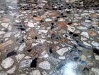 Concrete Cut Polish& Power Trowel