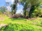 27 P Bare Land Sale At Darmapala Mawatha Madiwela Kotte