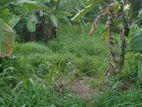Bare Land for Sale - Indolamulla