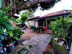 13P Land & House For Sale in Pelawatta Road, Nugegoda