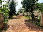 Bare Land for Sale in Thalawathugoda