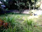 Valuable land for sale in negombo