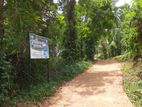 Land for Sale in Pallepola