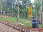 New land in matale