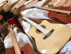 Divisor Acoustic Box Guitar ( Brand New )