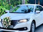 Wedding Car for hire Primeo