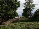 Land for Sale in - Dehiwala