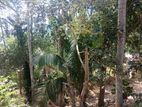 Land for Sale in Balangoda
