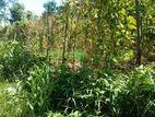 Land for Sale in Balangoda Depelamulla