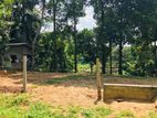 Land for sale in Kandy (Lewella)