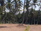 Land for Sale - Mawaramandiya