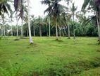 12 perch Land for sale in Poruwadanda