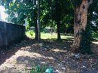 Land for Sale in Talawathugoda