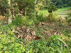 Land for sale in Mawanella danagama