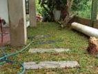 Garden Service Landscaping