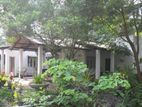 House for Sale in Hiripitiya (C7-1695)