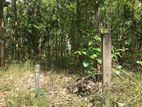 Land For Sale at Anuradhapura