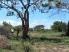 Land for Sale - Hambantota