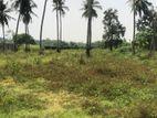Land for Sale in Chandrika Kumaratunga Mawatha - Malabe (C7-0757)