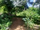 Land for sale in Kandy Balagolla