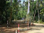 Land for Sale in Kegalle Randeniya