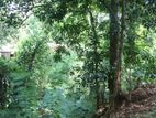 Land for sale Kandy - Haragama
