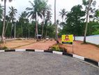 Land for sale negombo