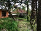 Land for Sale - Pannipitiya