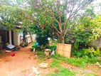 Land for Sale - Piliyandala