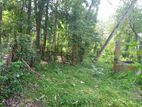 LAND FOR SALE PITIPANA