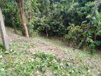 Land in Polgolla Doragamuwa