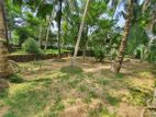 Land with House for Sale in Pannipitiya