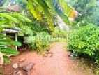 (LD 289) Water Front 40 P Land Sale At Koswatha Nawala