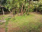 Main Road Facing Land in Kurunegala-Negombo (No.34 Road)